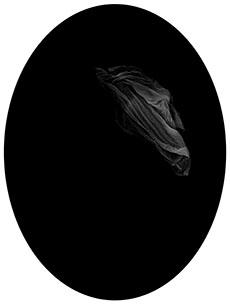 Elizabeth M. Claffey - Matrilinear #28