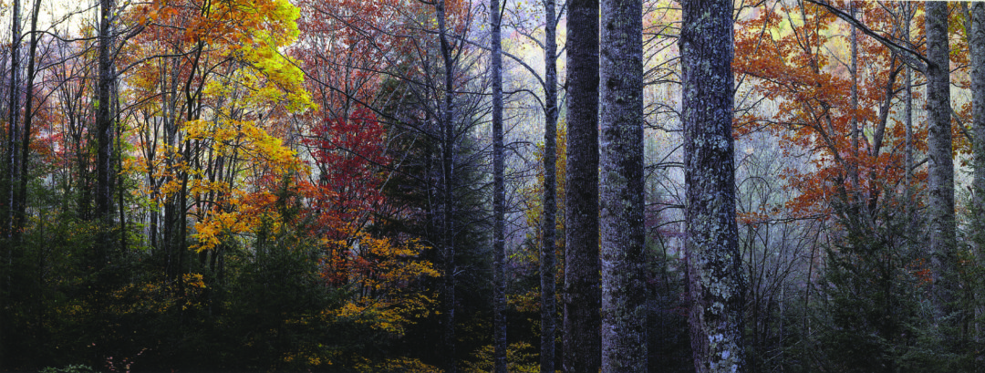 3rd Appalachian Mountain Photography Competition