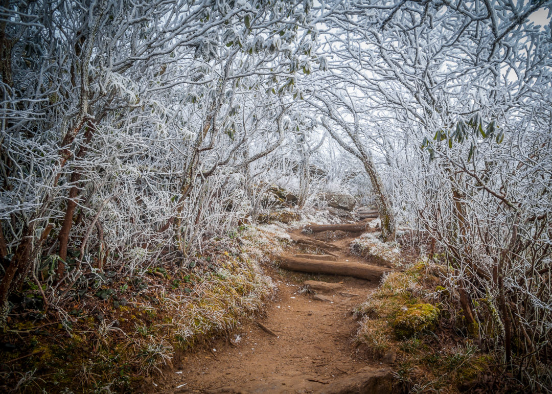 15th Annual Appalachian Mountain Photography Competition & Exhibition