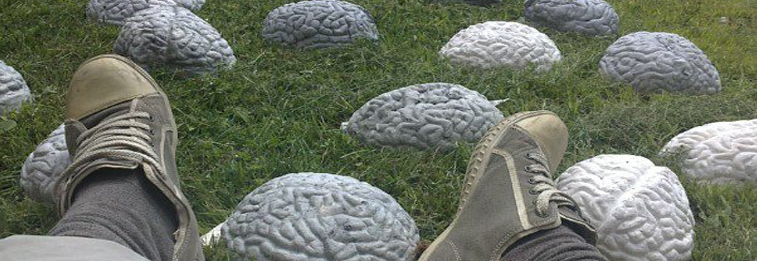 International Focus Series I-V: III. Jędrzej Stępak: Spaces of the Brain – A Site Specific Installation