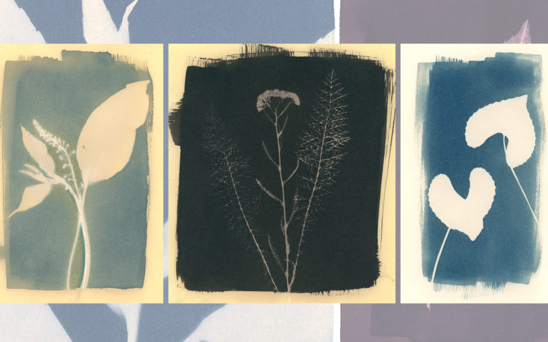 Connecting with Place: Cyanotype Workshop for Educators